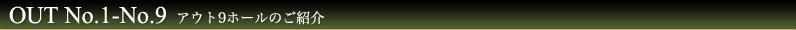 ボナリ高原ゴルフ場コースをアウト9ホールを一覧で紹介